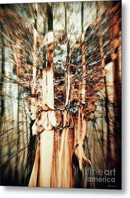 Hidden Angel 2 Metal Print by Elizabeth McTaggart