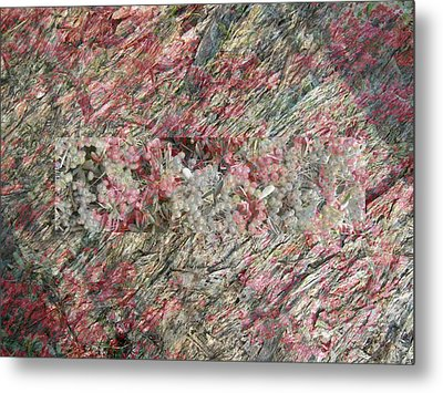 Hidden Berries Metal Print by Eileen Shahbazian