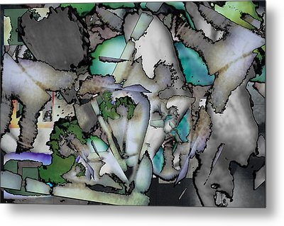 Hidden Image Metal Print by Don Gradner