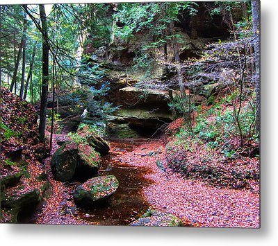Hidden Jewel Metal Print by Vijay Sharon Govender