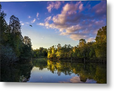 Hidden Light Metal Print by Marvin Spates
