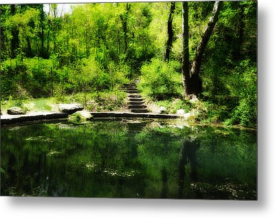 Hidden Pond At Schuylkill Valley Nature Center Metal Print by Bill Cannon