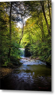 Metal Print featuring the photograph Hidden Wonders by Marvin Spates