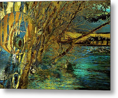 High Water In The Meadows Metal Print by Anne Weirich