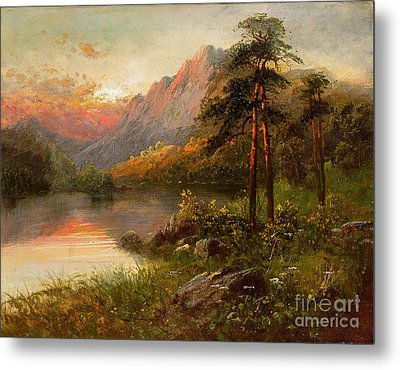 Highland Solitude Metal Print