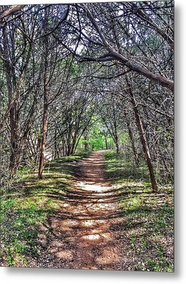 Hiking Meridian State Park  Metal Print by Debra Martz