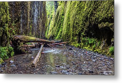 Metal Print featuring the photograph Hiking Oneonta Gorge by Pierre Leclerc Photography