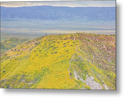 Metal Print featuring the photograph Hiking The Temblor by Marc Crumpler