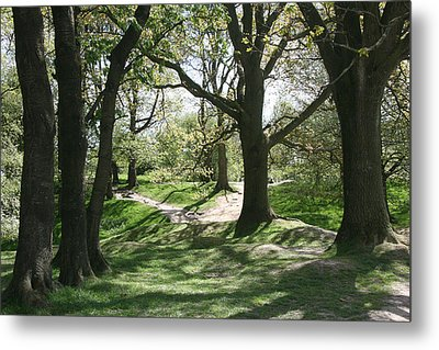 Metal Print featuring the photograph Hill 60 Cratered Landscape by Travel Pics