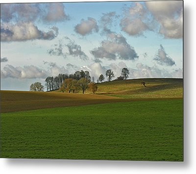 Hill Country Metal Print by Bonnie Bruno