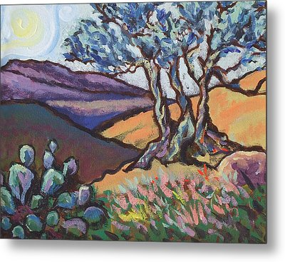 Hill Country Dusk Metal Print