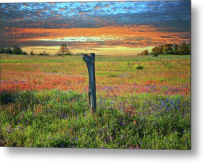 Hill Country Heaven Metal Print