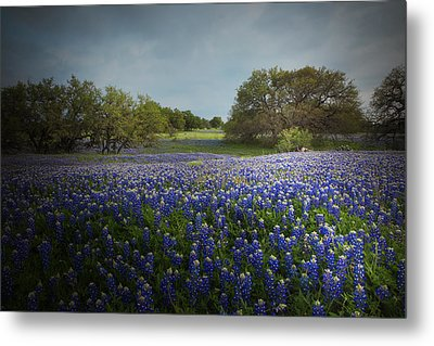 Hill Country Ranch Metal Print