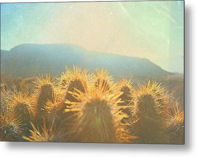 Metal Print featuring the photograph Hill Top Sunset  by Mark Ross