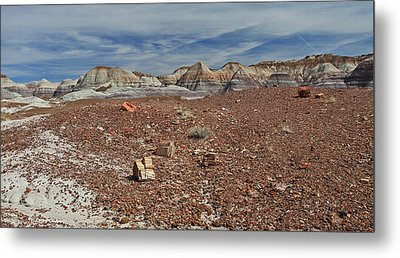 Metal Print featuring the photograph Hillside Hues by Gary Kaylor