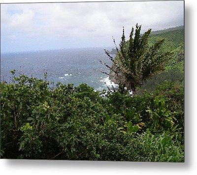 Hilo Coast Hawaii Metal Print by Don Phillips