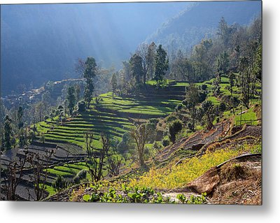 Himalayan Stepped Fields - Nepal Metal Print