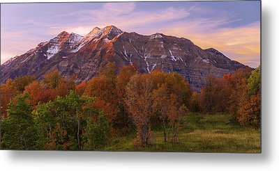 Hint Of Fall Metal Print by Chad Dutson