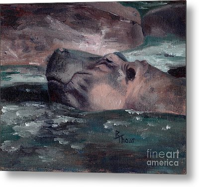 Hippo Metal Print by Brenda Thour