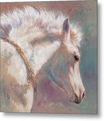 His Coat Reflects The Sky Metal Print by Tracie Thompson