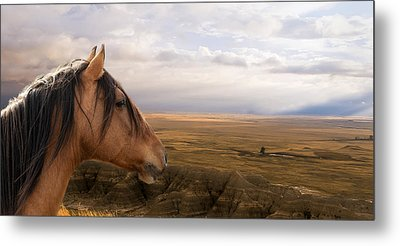 His Domain Metal Print by Ron  McGinnis