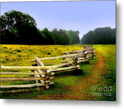 Historic Path Natchez Trace Parkway Metal Print by T Lowry Wilson