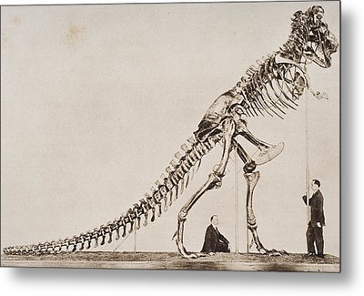 Historical Illustration Of Dinosaur Metal Print