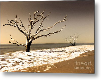 Metal Print featuring the photograph Hold The Line by Dana DiPasquale
