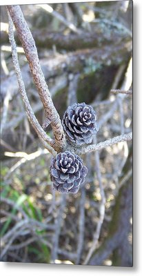Metal Print featuring the photograph Holding On by Angi Parks