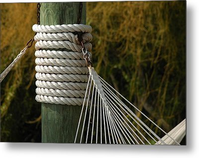Metal Print featuring the photograph Holding On by Lori Mellen-Pagliaro