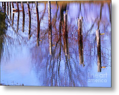 Holding Steadfast Metal Print by Cathy  Beharriell