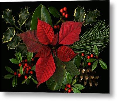 Holiday Greenery Metal Print by Deborah J Humphries