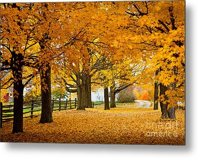 Hollis Farm Metal Print