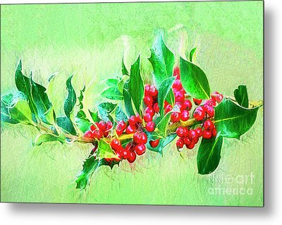 Metal Print featuring the photograph Holly Berries Photo Art by Sharon Talson