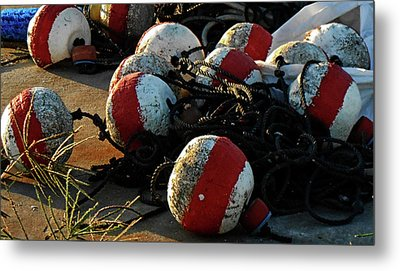 Homa, La Bouys Metal Print by Cynthia Powell
