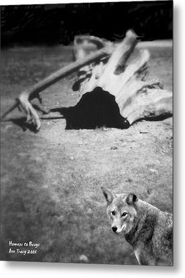Homage To Josef Beuys Metal Print by Ann Tracy