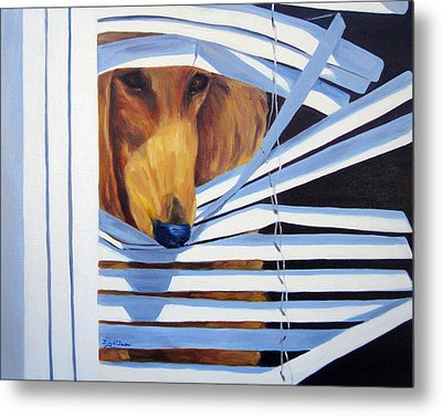 Home Alone Metal Print by Terry  Chacon