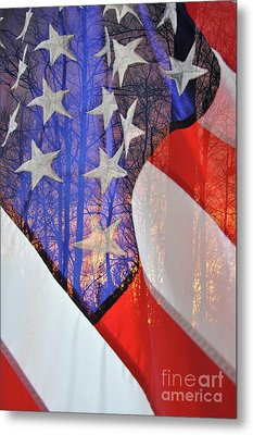 Metal Print featuring the photograph Home Of The Free by Gina Savage