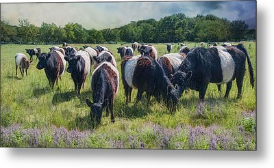 Milk And Cookies Metal Print by Robin-Lee Vieira