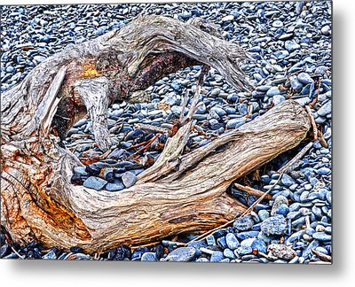 Homer Spit Driftwood  Metal Print by Diane E Berry