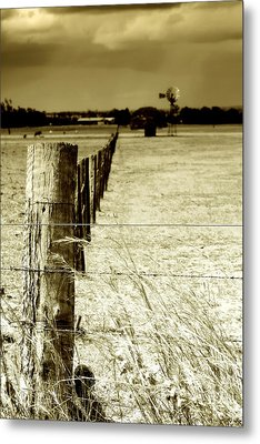 Homeward Bound Metal Print by Holly Kempe