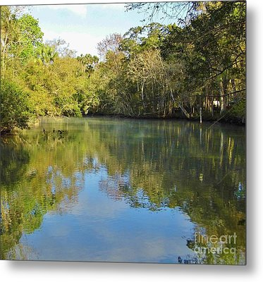 Homosassa River Metal Print