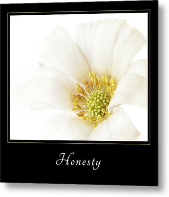 Metal Print featuring the photograph Honesty 2 by Mary Jo Allen