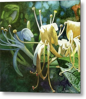 Honeysuckle Sun Metal Print