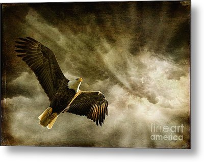Honor Bound Metal Print by Lois Bryan