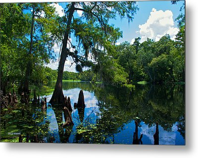Hontoon Dead River Metal Print