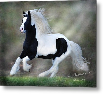 Hope And Glory Metal Print by Terry Kirkland Cook