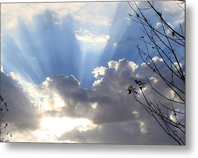 Metal Print featuring the photograph Hope by Christie Minalga