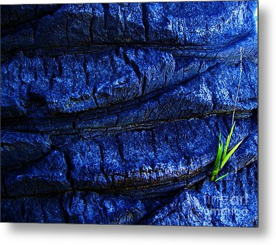Metal Print featuring the photograph Hope by Vanessa Palomino