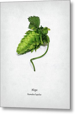 Hops Metal Print